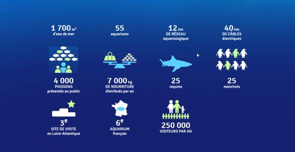 infographie ocearium